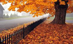 أنواء كوردستان تعلن أول أيام الخريف