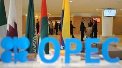 اسعار النفط تنخفض مع ترقب لاجتماع اوبك
