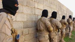تركيا: سنعيد دواعش سوريا إلى أوروبا.. لسنا فندقاً