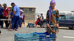 Six years after the genocide they were subjected to.. Yazidis are still fighting for life