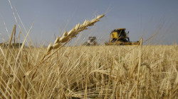 رغم الحرائق.. العراق يعلن تحقيق فائضٍ يقدر بـ500 الف طن من الحنطة