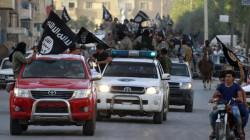 """ما هي أسباب تأخر اقتحام """"جزيرة داعش"""" بالعراق؟"""