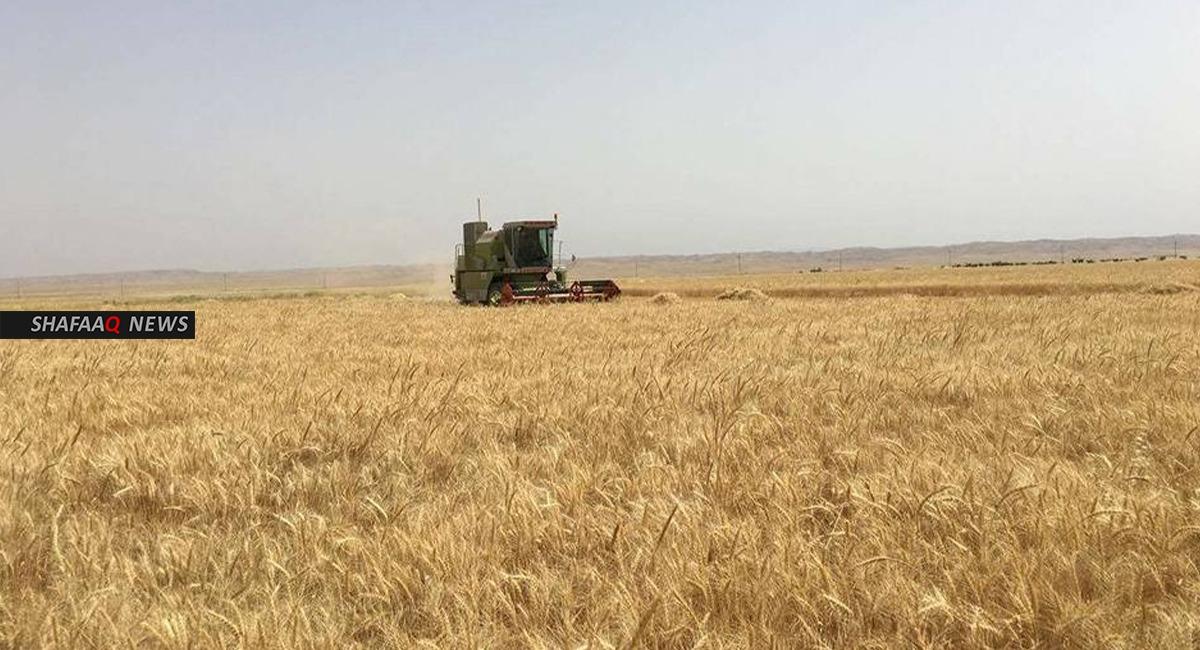 كورونا تضرب النشاط الزراعي في صلاح الدين
