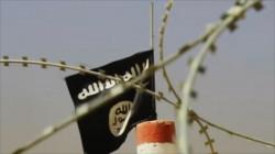 غداة اختطافهم.. تحرير 3 أشخاص من قبضة داعش في الأنبار