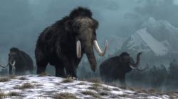 اكتشاف ضخم يفتح الباب لفك لغز انقراض الماموث