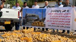 صور .. فلاحون غاضبون يلقون بمحاصيلهم أمام وزارة الزراعة بإقليم كوردستان