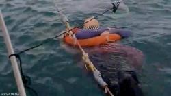العثور على امرأة حية وسط البحر بعد عامين من اختفائها.. فيديو