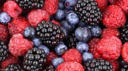 """5 أطعمة """"خارقة"""" تقوي الجسم في مواجهة الأمراض"""