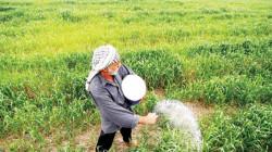 محافظة عراقية تحذر من خطط زراعية فاشلة: ستحل الكوارث هذا الشتاء