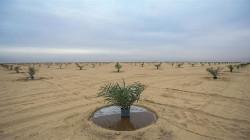 الحكومة العراقية ترفض إستثمار المياه الجوفية في صحراء غرب الفرات