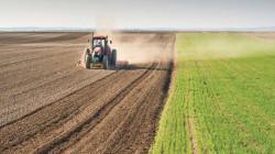 الزراعة: توقعاتنا بمساهمة الزراعة بالناتج القومي تتخطى نسبة وزارة التخطيط