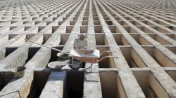 صور.. جثث كورونا تتكدس بأكبر مقابر إيران: ما يحدث تجاوز الحرب العراقية