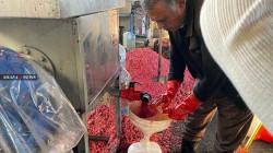 Halabja breathes life through the pomegranate gate