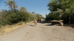 """""""بساتين العبارة"""" الملاذ الدائم لداعش في ديالى: مجازر دموية وحلول أمنية غائبة"""