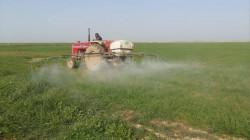 خانقين تخصص 90 الف دونم للخطة الزراعية الشتوية