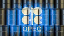 OPEC crude reaches 49.61$