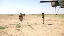 صور.. الجيش العراقي ينفذ عملية أمنية بصحراء الرطبة ويداهم وكرا لداعش