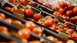 العراق يصدّر ألفي طن من فائض الطماطم للسعودية