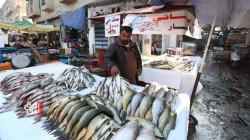 صور.. أسواق الأسماك تنتعش في بغداد