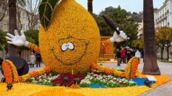 بالصور..انطلاق فعاليات كرنفال الليمون السنوي في فرنسا