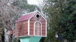 حكاية طيور حديقة السليمانية العامة في صور