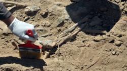 صلاح الدين تطالب بحسم ملف مقابر جماعية لضحايا اعدمهم داعش