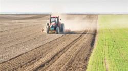 بسبب الكهرباء.. محافظة تواجه خطر فقدان 90٪ من إنتاج القمح والشعير