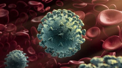 فنلندا .. اكتشاف طفرة جديدة لفيروس كورونا تراوغ الفحوص
