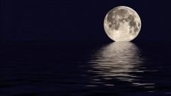 ملياردير يبحث عن مرافقين في رحلته إلى القمر