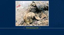 """صور.. الكشف عن مقابر جماعية داخل """"آبار"""" في صلاح الدين ونينوى"""