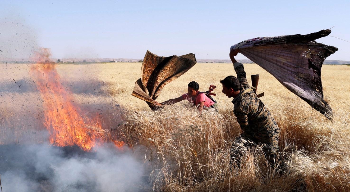 """بسبب العجز الغذائي.. """"الفاو"""" تعلن عن حاجة العراق إلى مساعدة غذائية خارجية"""