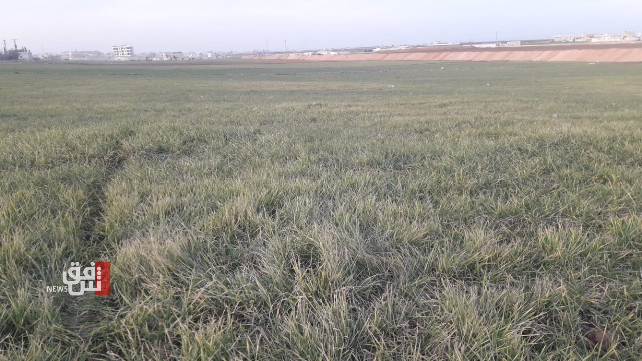 شح المياه وانعدام الدعم يفقدان صلاح الدين نصف إنتاج الخطة الشتوية