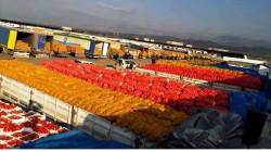 كلار الكوردستانية تنقذ نصف سكان ناحية في ديالى من كارثة الجوع