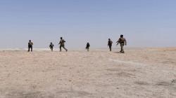 """""""قسد"""" تضيق الخناق على خلايا داعش في وادي العجيج"""