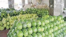 لوفرتهما  محلياً.. العراق يمنع استيراد الرقي والبطيخ