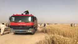 صور.. انقاذ عشرات الدوانم لمحصول الحنطة من السنة النيران في صلاح الدين