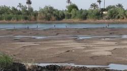 جهود دبلوماسية مكثفة لتقاسم ضرر شح المياه في العراق مع ثلاث دول