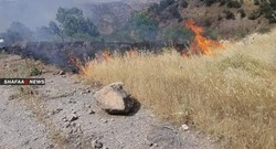 """قصف جوي ومدفعي تركي يتسبب بحرائق """"كبيرة"""" في غابات ومزارع بدهوك"""