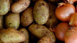 50 بالمئة من قيمة الصادرات الزراعية الايرانية من ثلاث دول بينها العراق