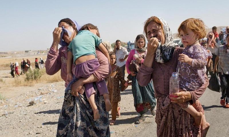 ئامار تازهى شمارهى رفياگهيل و قورتاربويهيل ئێزيدى لهدهس داعش