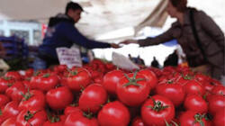 Iraq announces regional and Arab demand on its agricultural and animal products