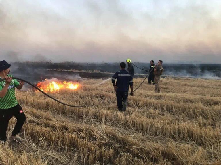 إحصائية.. الحرائق تلتهم 100 ألف دونم من المحاصيل الزراعية
