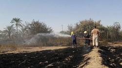 الحرائق تلتهم 250 دونماً في دهوك