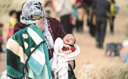 في أربيل.. مخيم جديد لاستقبال اللاجئين السوريين