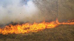 اندلاع حرائق في محاصيل زراعية للكورد الكاكائيين جنوب كركوك