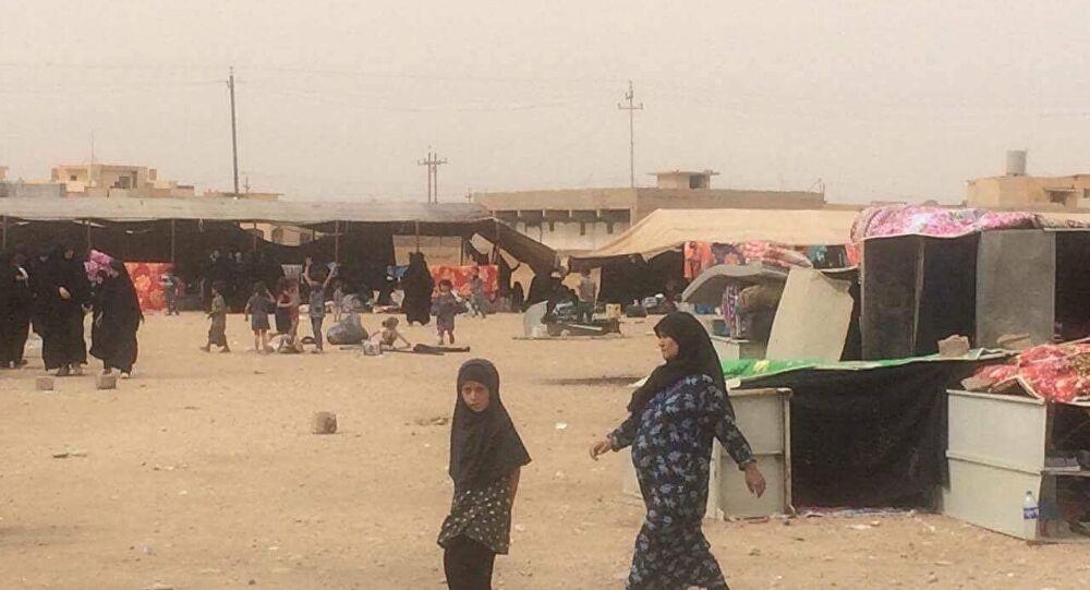عشائر تتفق على ترحيل أكثر من 250 اسرة داعشية من محافظة عراقية