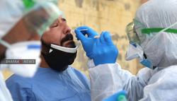 شفاء أكثر من 50 مصابا بكورونا في النجف