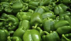 وزارة الزراعة تدعو لمراقبة منافذ اقليم كوردستان بتطبيق حظر استيراد 15 محصولا
