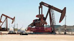 """""""Dana Gas"""": Our production is not affected by the oil market"""