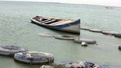 الموارد المائية تؤكد صحة المخاوف: الرزازة ميتة وخارجة عن الخدمة